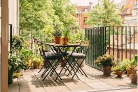 Trồng cây gì ở ban công chung cư hợp phong thủy?
