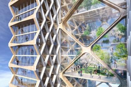 Sự trỗi dậy của các tòa nhà gỗ