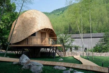 Treewow O – Nhà trên cây với mái vòm cong / MONOARCHI