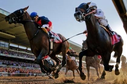 Đầu tư 1,5 tỷ USD xây trường đua ngựa tại Vĩnh Phúc