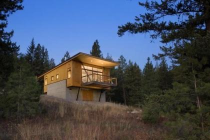 Vẻ đẹp mộc mạc của ngôi nhà nhỏ giữa rừng thông